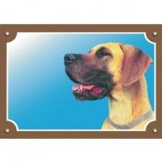Barevná cedulka Pozor pes, Doga žlutá