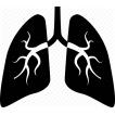 Poruchy dýchacích ciest, horúčky