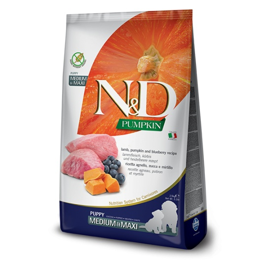 N&D Dog Pumpkin Puppy Medium & Maxi Lamb & Blueberry 12kg
