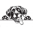 Starostlivosť o šteňatá