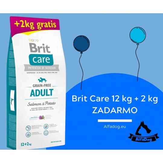 Brit Care Dog Grain-free Adult Salmon & Potato 12kg + 2 kg ZADARMO