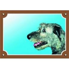 Barevná cedulka Pozor pes, Irský vlkodav
