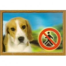 Cedulka 3D PSI, Beagle
