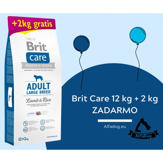 BRIT Care dog Adult Large Breed Lamb & Rice 12kg + 2 kg ZADARMO