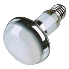 Basking Spot-Lamp 50 W