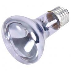 Neodymium Basking-Spot-Lamp 75 W (RP 2,10 Kč)