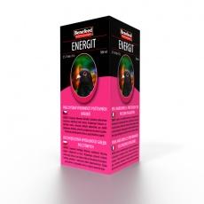 Benefeed Energit H holuby 1 l