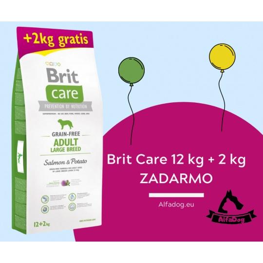 Brit Care Dog Grain-free Adult Large Breed Salmon & Potato 12kg + 2 kg ZADARMO