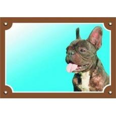 Barevná cedulka Pozor pes, Francouzský buldoček tmavý